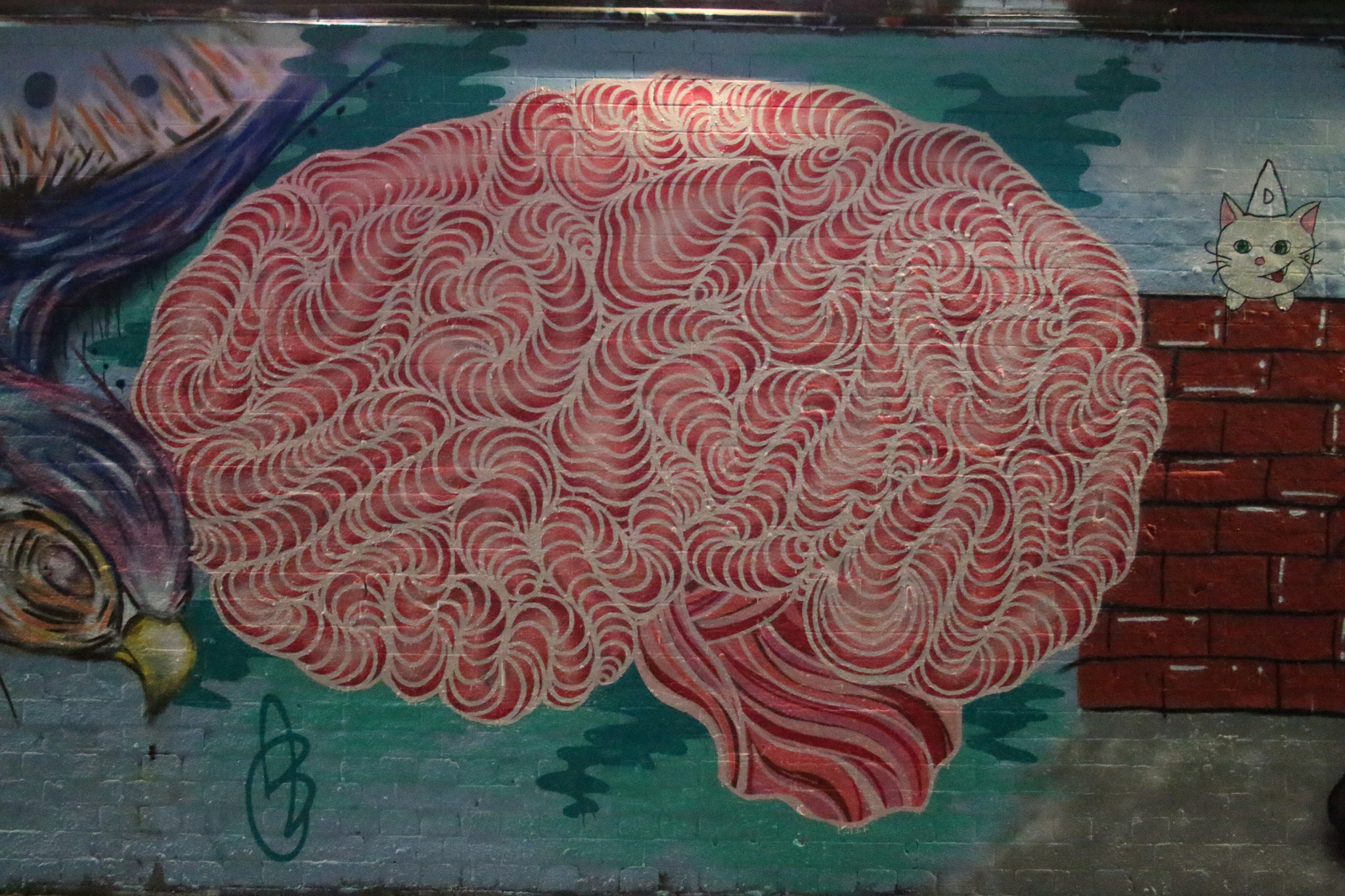 """Can a """"Brain Map"""" Decode Our Inner Thoughts?"""