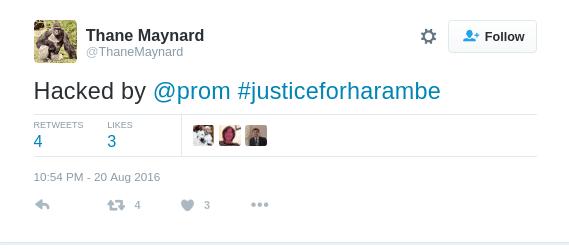 harambe hack prom
